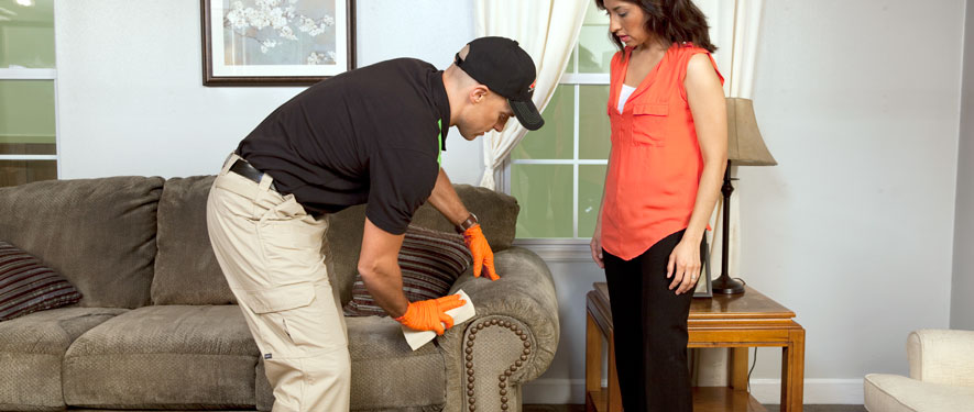 Vincennes, IN carpet upholstery cleaning
